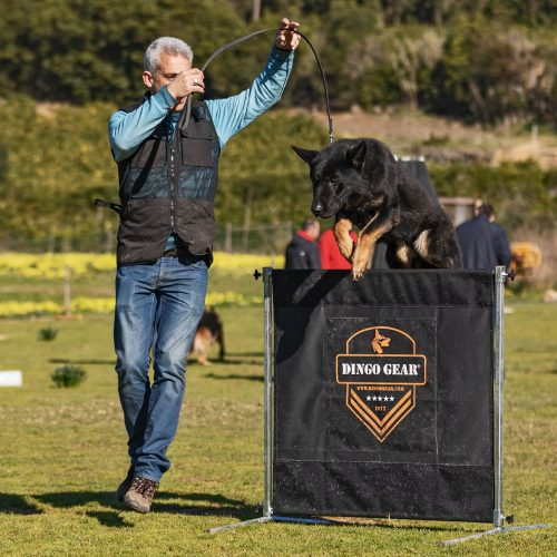 preskakovalna ovira za IGP trening psa